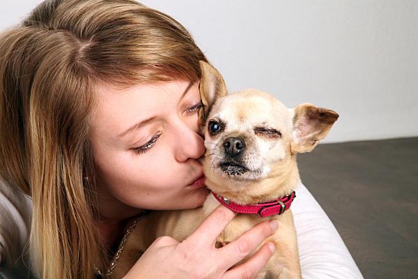 Tierfoto junge Frau, die ihren kleinen, hellen Hund von hinten umarmt und küsst.