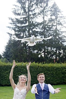 Low Key Hochzeitsfoto fliegende, weiße Hochzeitstaube