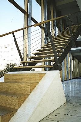 Architekturfoto Treppe mit Holzstufen und Metallrahmen vor großer Fensterfront.